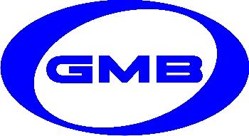 GMB GT20040 | Ролик ГРМ | Купить в интернет-магазине Макс-Плюс: Автозапчасти в наличии и под заказ